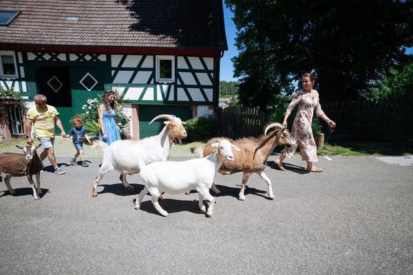 Ziegenspaziergang Kultierhof