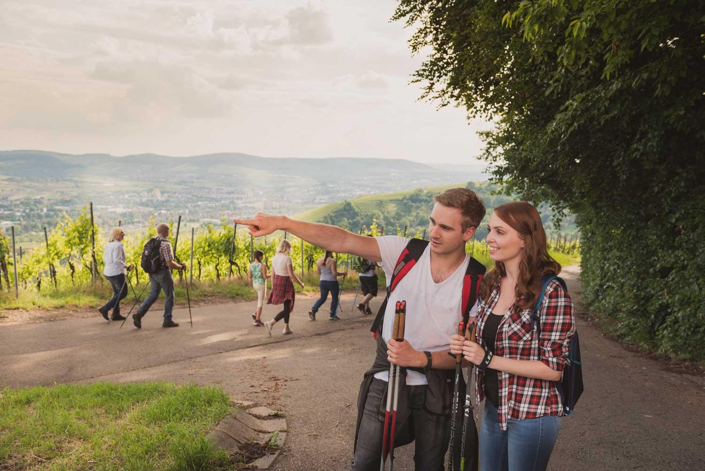 Remstal, Würrtemberger Weinweg