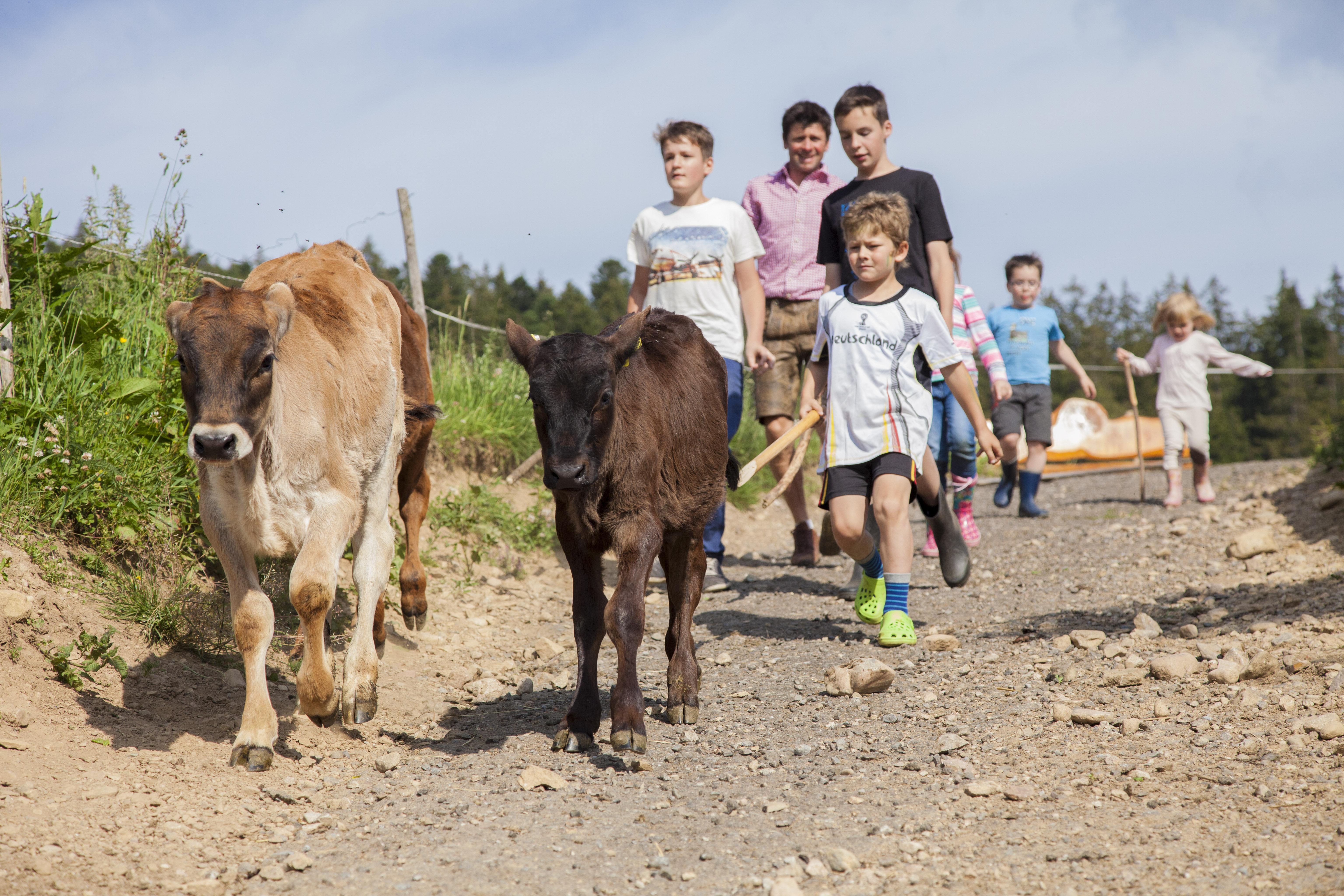 Organic Childres Fram Wilmershof