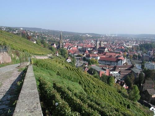 Steillage Esslinger Neckarhalde Württemberg