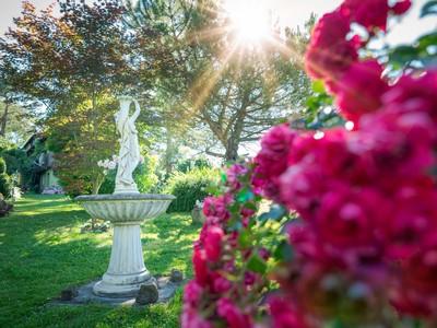 Insel Reichenau_Privatgarten von Karin Böhler