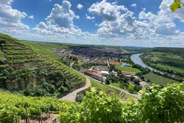 Weinsüden Weinort Mundelsheim, Weinregion Stuttgart