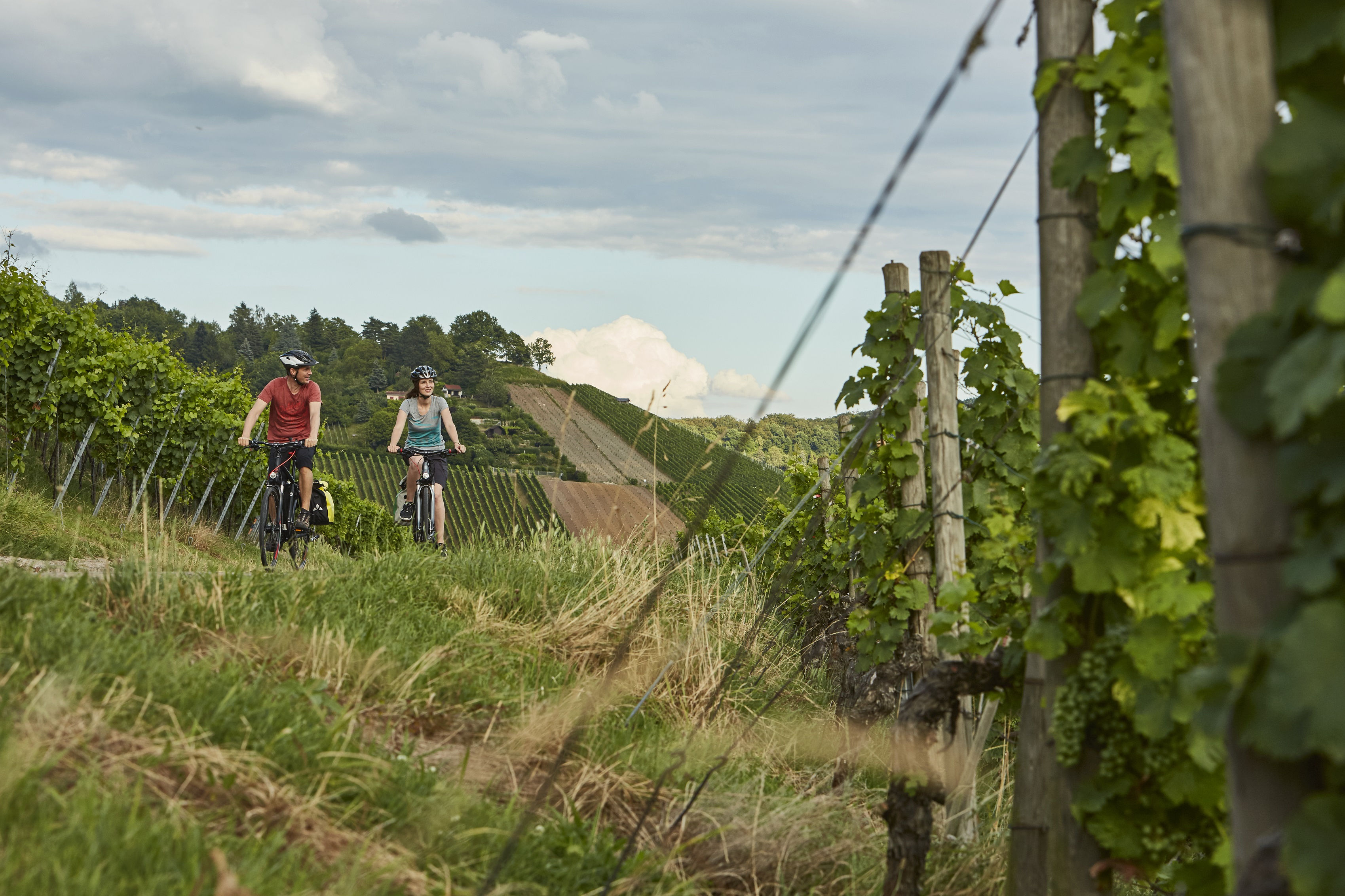 Württemberger Weinradweg