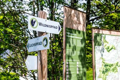 Nationalpark Schwarzwald_Beschilderung Wildnispfad