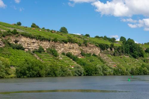 Weinland Württemberg, Weinregion Stuttgart - Steillagen am Neckar