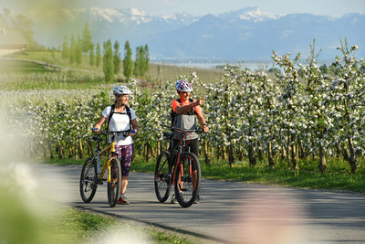 Panorama Blütenweg am Bodensee