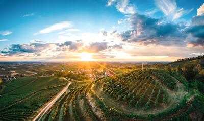 Weinsüden Weinort Oberkirch, Weinregion Ortenau